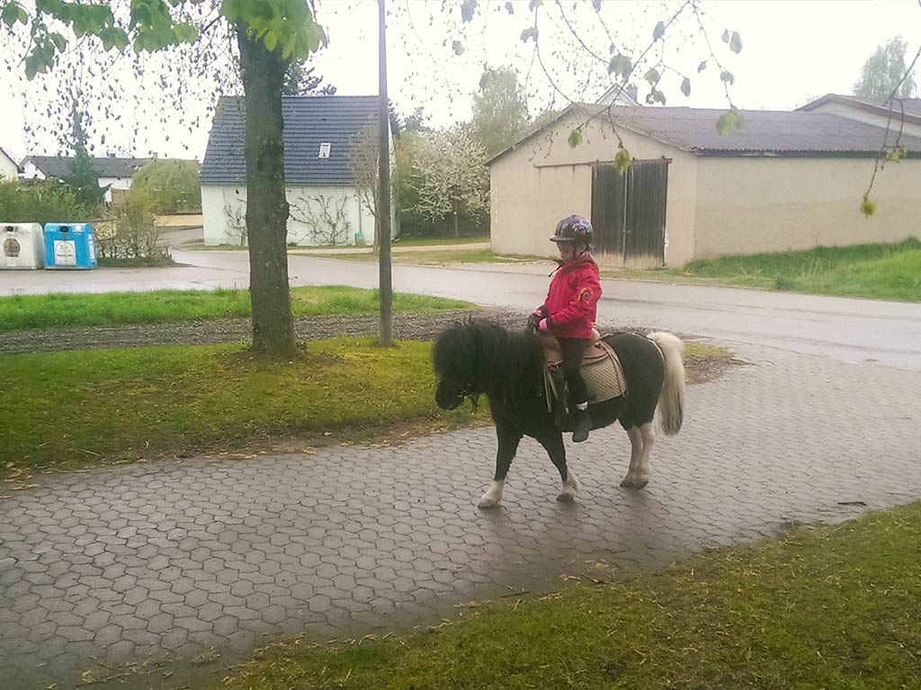 Ferienhof Joas, Ponyreiten