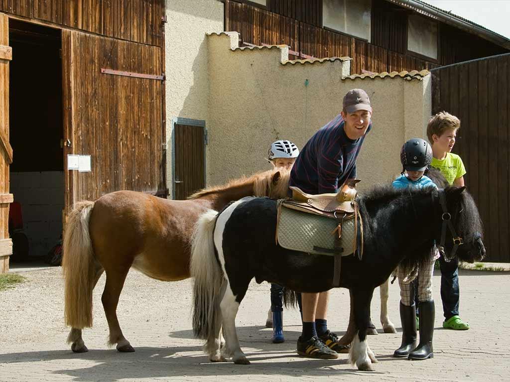 Ferienhof Joas, Ponys mit Sattel