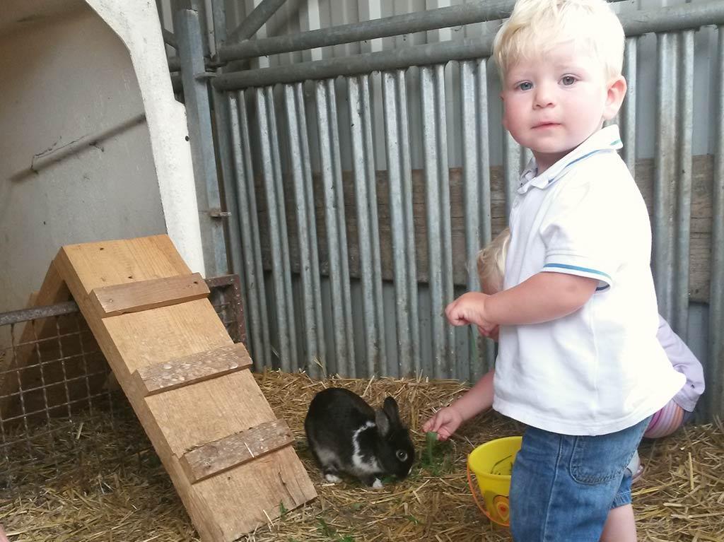 Unsere Tiere, Ferienhof Joas, Kaninchen