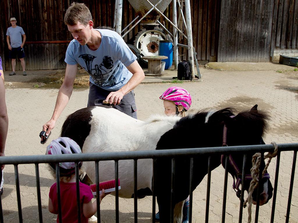 Ferienhof Joas, Pony