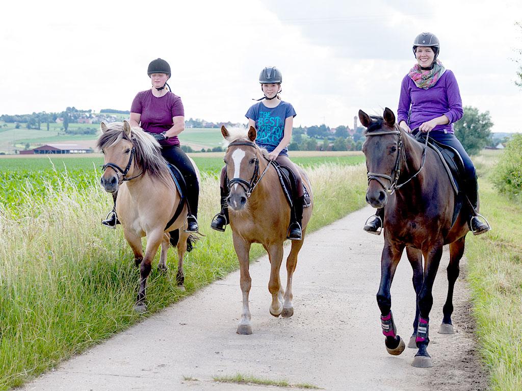 Ferienhof Joas, Reiten auf Pferden